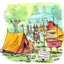 chien_camping